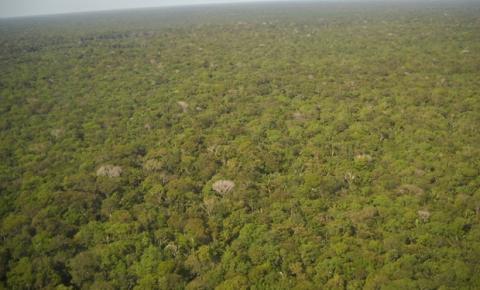 Empresários paulistanos criam projeto que transforma passos e desafios pessoais em benefícios para a Amazônia