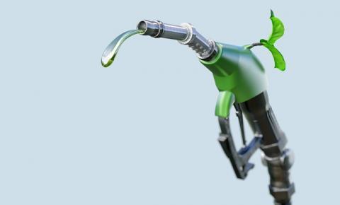 Iniciativa digital do Sindalcool-PB ressalta benefícios de abastecer com etanol o ano inteiro